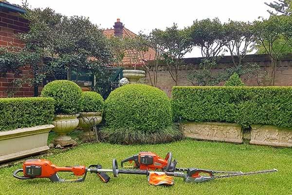 garden clearance icon